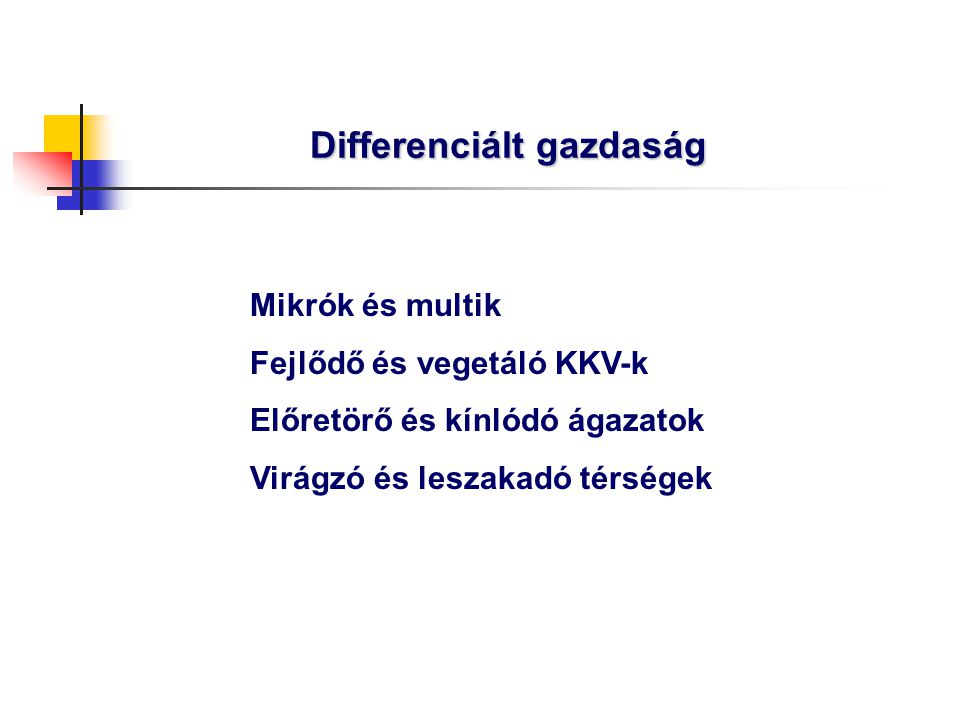 Differenciált gazdaság