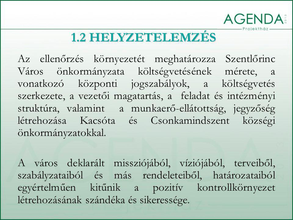 1.2 HELYZETELEMZÉS