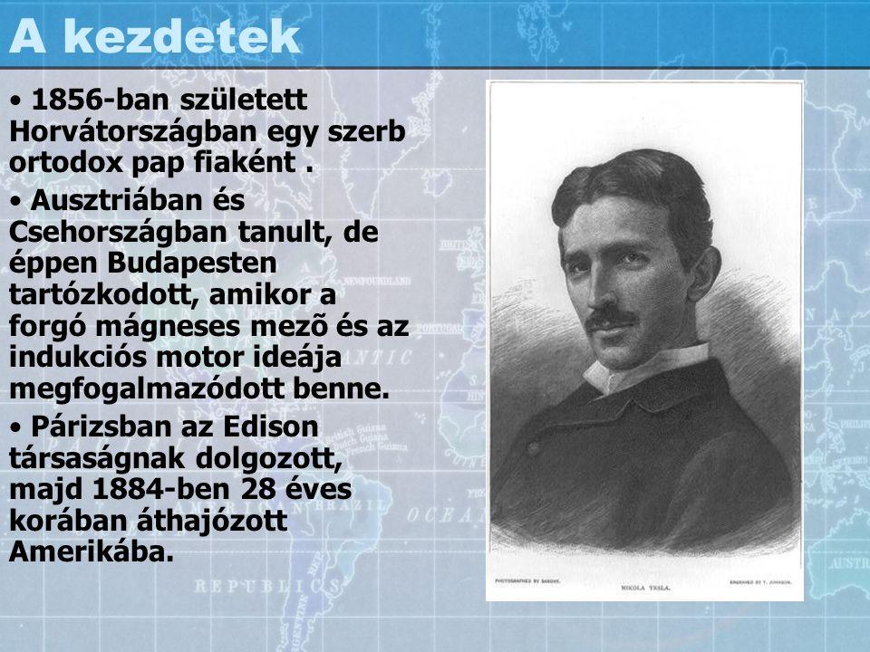 A kezdetek 1856-ban született Horvátországban egy szerb ortodox pap fiaként .