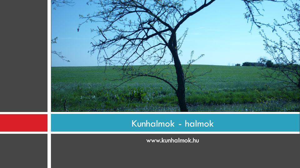 Kunhalmok - halmok www.kunhalmok.hu