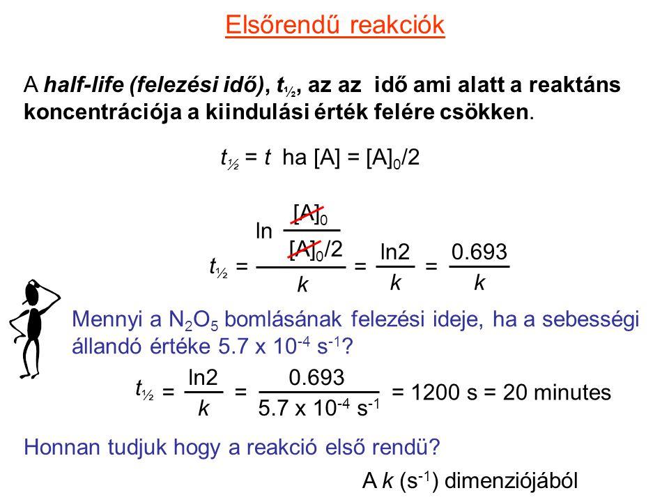 Elsőrendű reakciók A half-life (felezési idő), t½, az az idő ami alatt a reaktáns koncentrációja a kiindulási érték felére csökken.