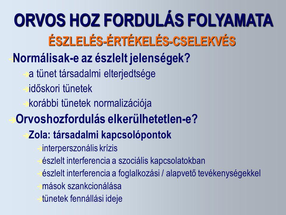 ORVOS HOZ FORDULÁS FOLYAMATA ÉSZLELÉS-ÉRTÉKELÉS-CSELEKVÉS