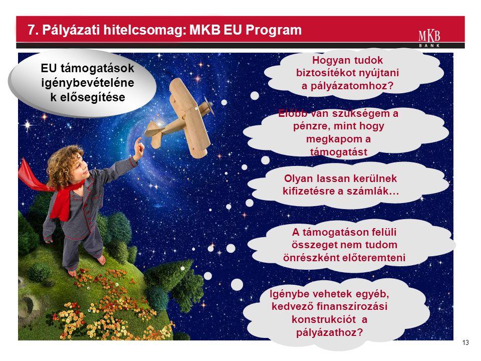7. Pályázati hitelcsomag: MKB EU Program