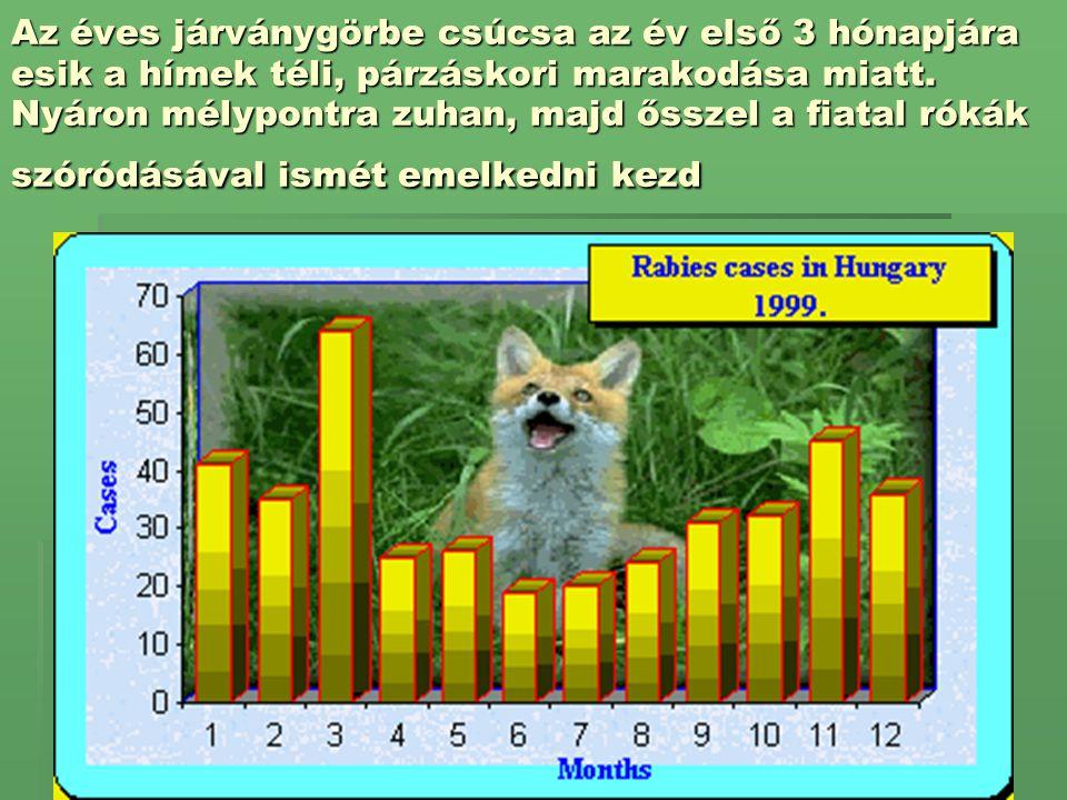 Az éves járványgörbe csúcsa az év első 3 hónapjára esik a hímek téli, párzáskori marakodása miatt.