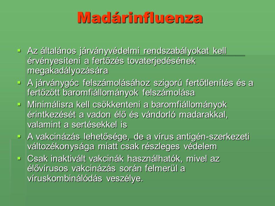 Madárinfluenza Az általános járványvédelmi rendszabályokat kell érvényesíteni a fertőzés tovaterjedésének megakadályozására.
