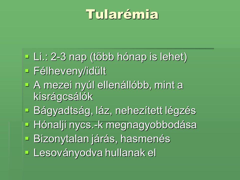Tularémia Li.: 2-3 nap (több hónap is lehet) Félheveny/idült