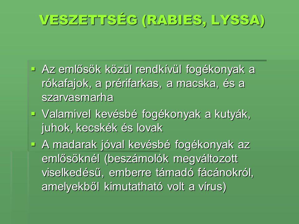 VESZETTSÉG (RABIES, LYSSA)