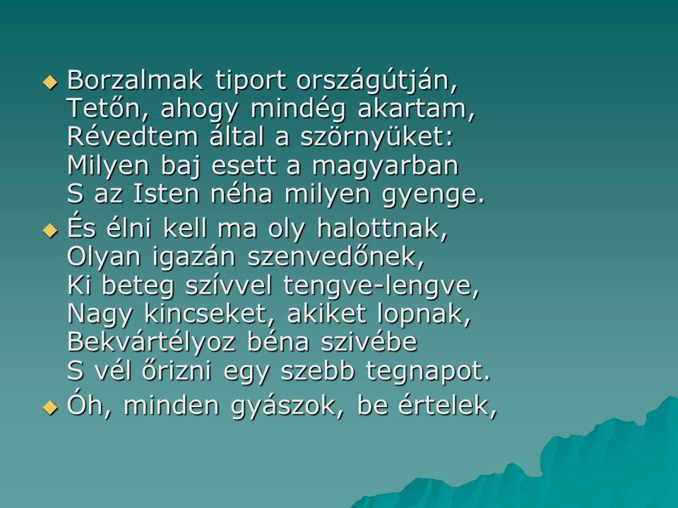 Borzalmak tiport országútján, Tetőn, ahogy mindég akartam, Révedtem által a szörnyüket: Milyen baj esett a magyarban S az Isten néha milyen gyenge.
