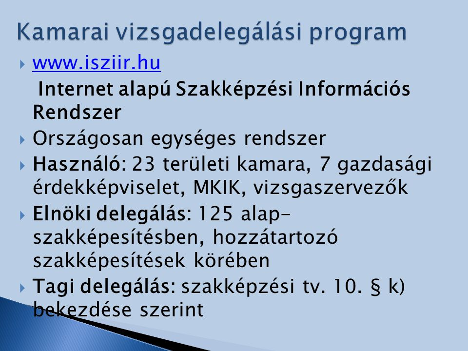 Kamarai vizsgadelegálási program