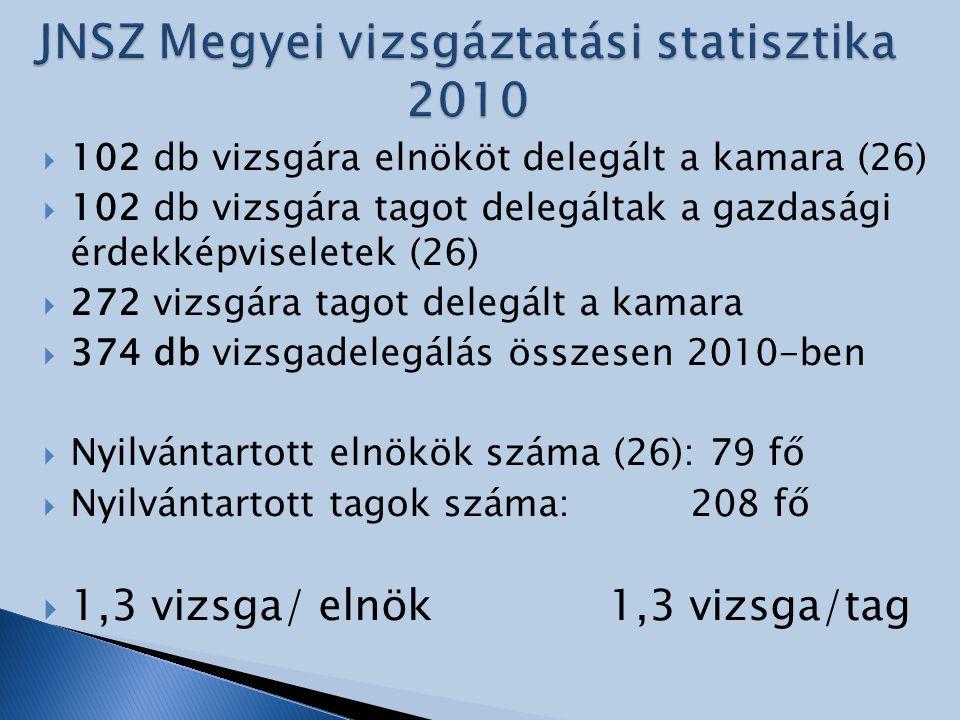 JNSZ Megyei vizsgáztatási statisztika 2010