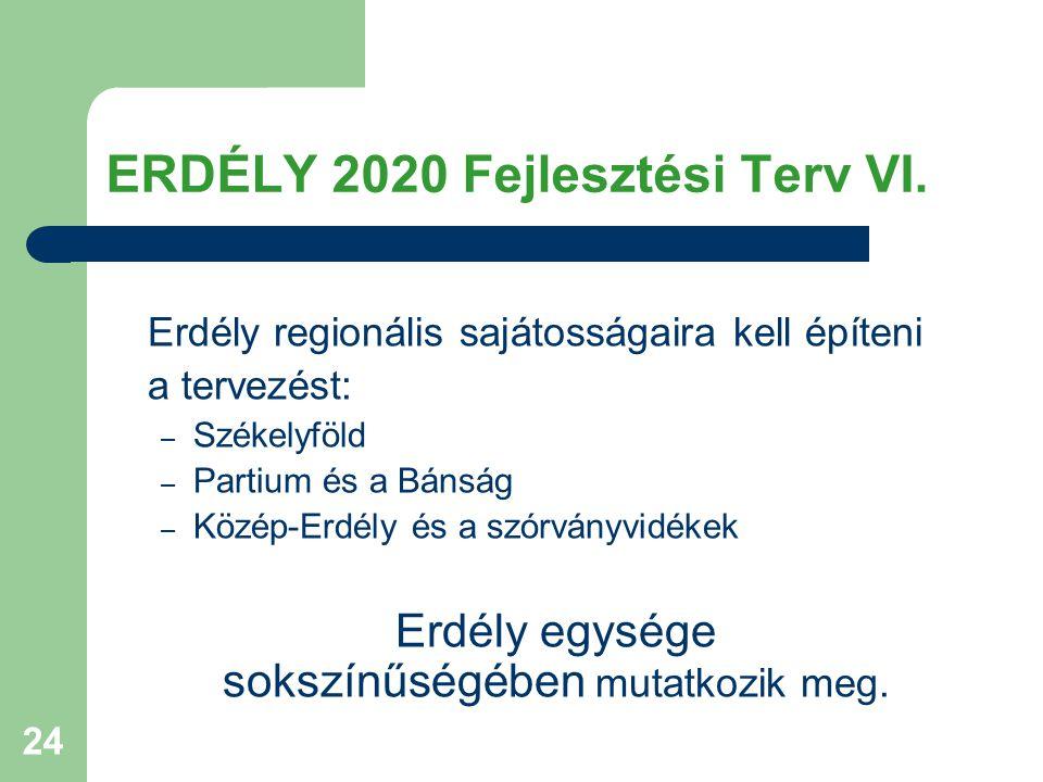 ERDÉLY 2020 Fejlesztési Terv VI.