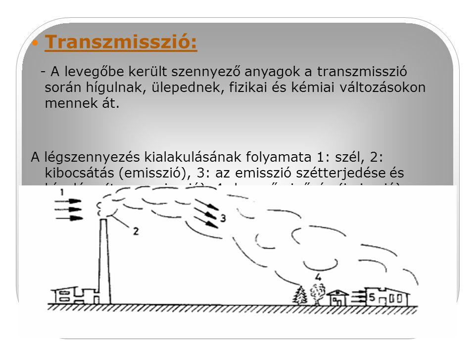 Transzmisszió: - A levegőbe került szennyező anyagok a transzmisszió során hígulnak, ülepednek, fizikai és kémiai változásokon mennek át.
