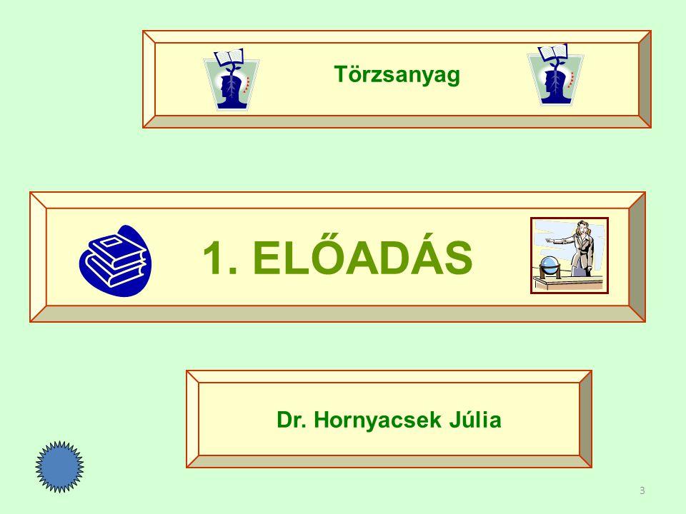 Törzsanyag 1. ELŐADÁS Dr. Hornyacsek Júlia