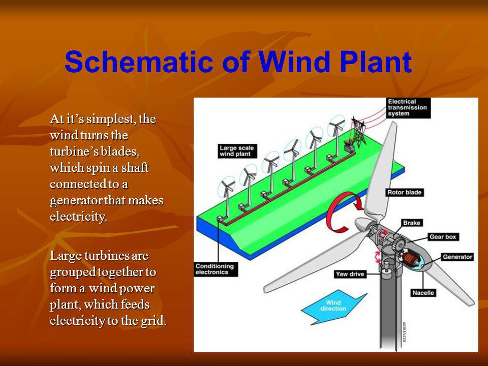Schematic of Wind Plant