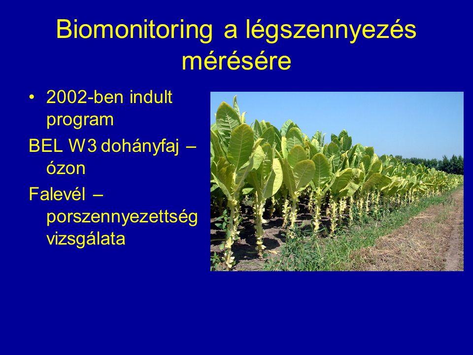 Biomonitoring a légszennyezés mérésére