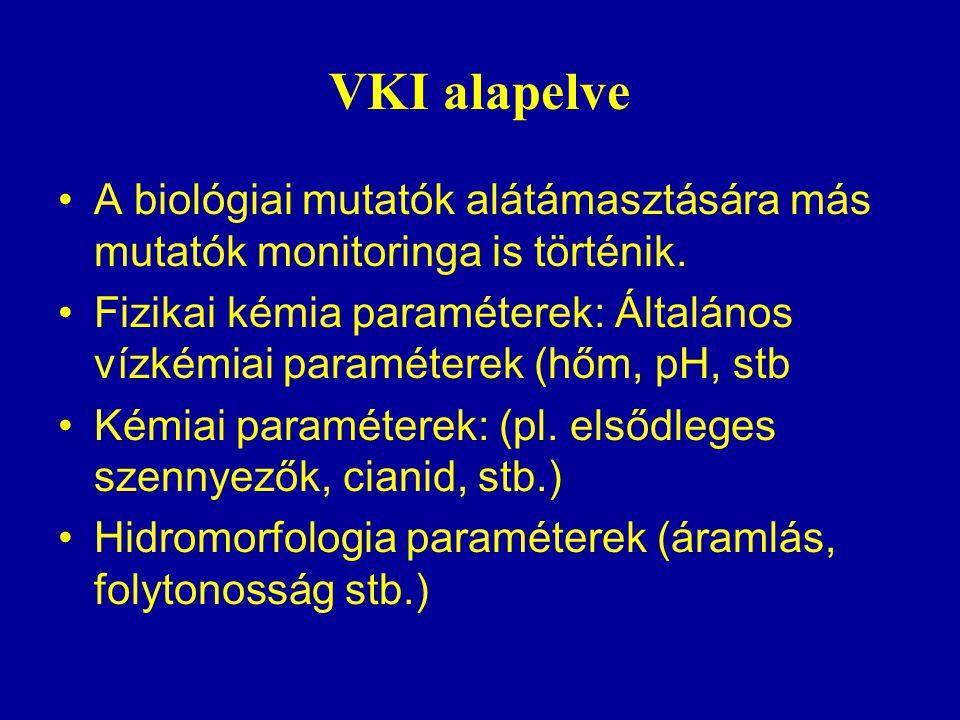 VKI alapelve A biológiai mutatók alátámasztására más mutatók monitoringa is történik.