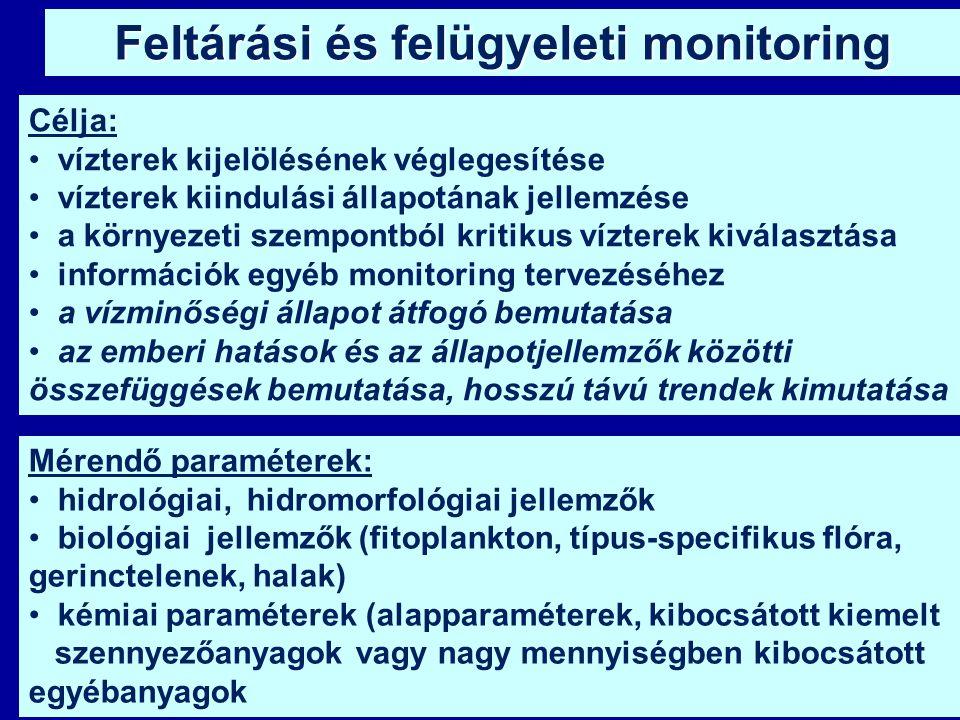 Feltárási és felügyeleti monitoring