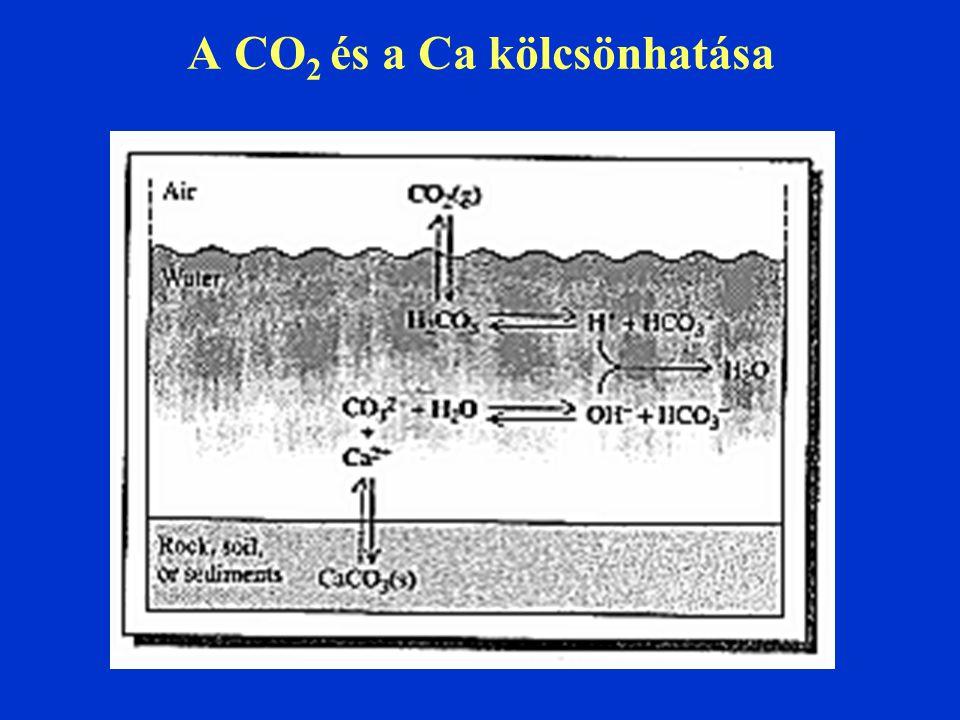A CO2 és a Ca kölcsönhatása