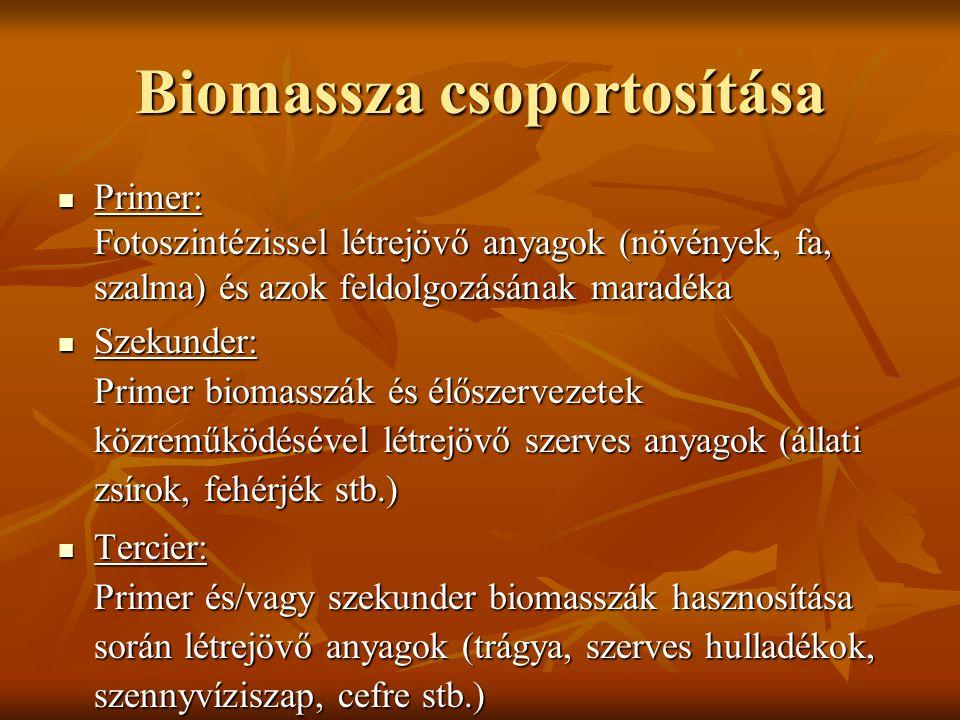 Biomassza csoportosítása