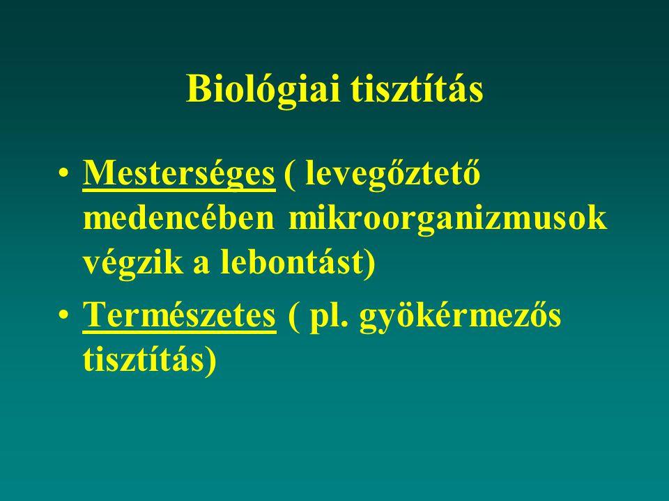 Biológiai tisztítás Mesterséges ( levegőztető medencében mikroorganizmusok végzik a lebontást) Természetes ( pl.