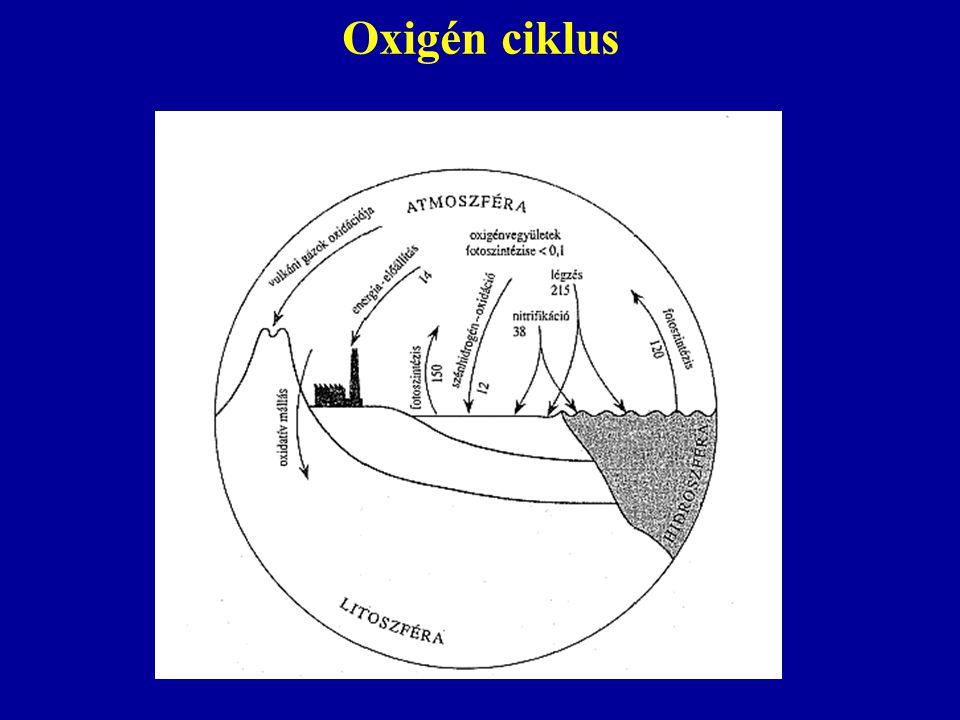Oxigén ciklus
