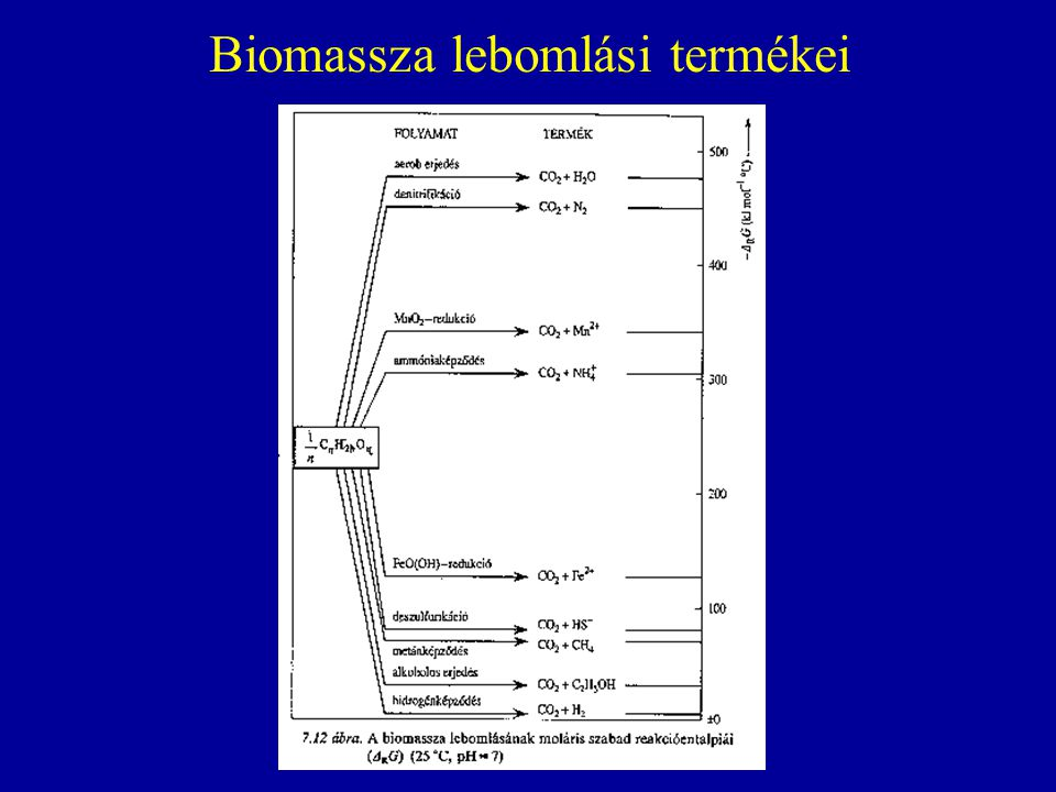 Biomassza lebomlási termékei