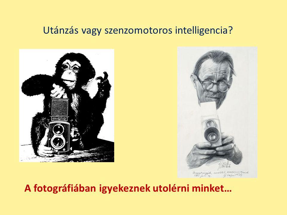 Utánzás vagy szenzomotoros intelligencia