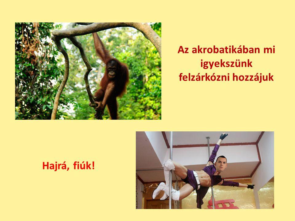 Az akrobatikában mi igyekszünk felzárkózni hozzájuk