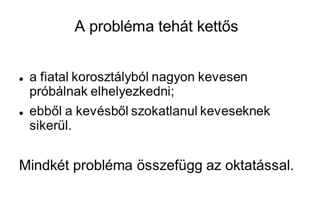 A probléma tehát kettős