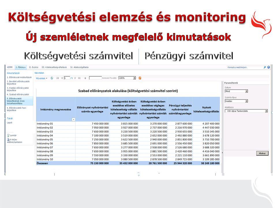 Költségvetési elemzés és monitoring