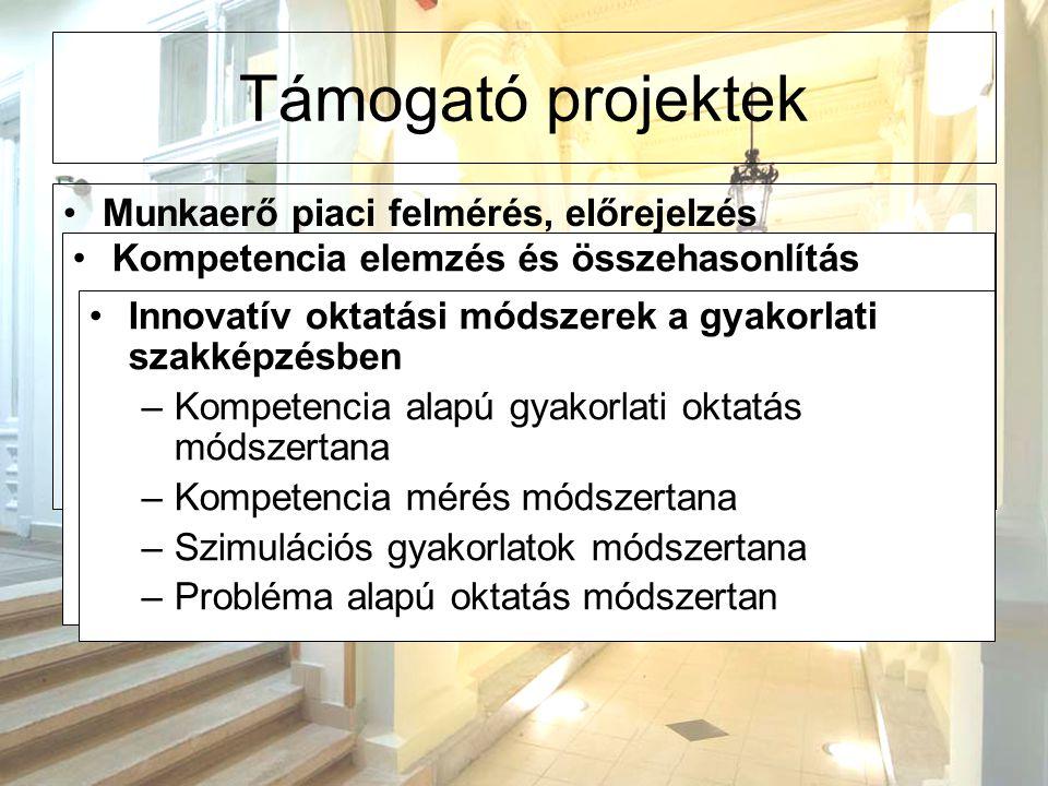 Támogató projektek Munkaerő piaci felmérés, előrejelzés