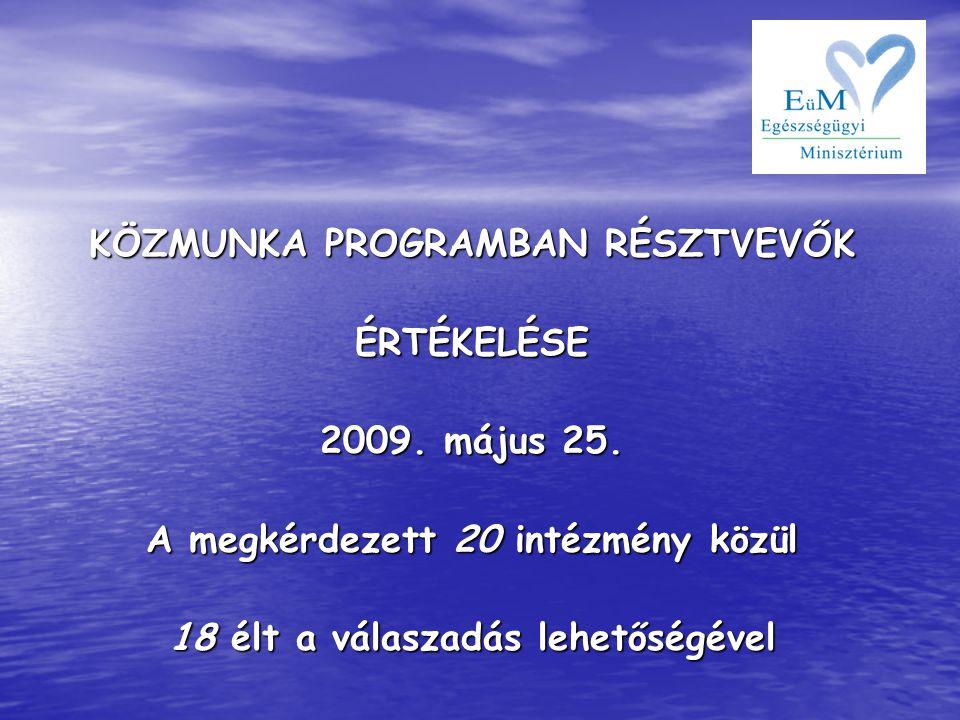 KÖZMUNKA PROGRAMBAN RÉSZTVEVŐK ÉRTÉKELÉSE 2009. május 25.