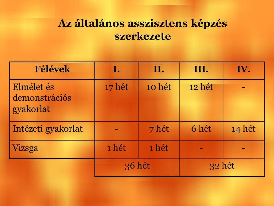 Az általános asszisztens képzés szerkezete