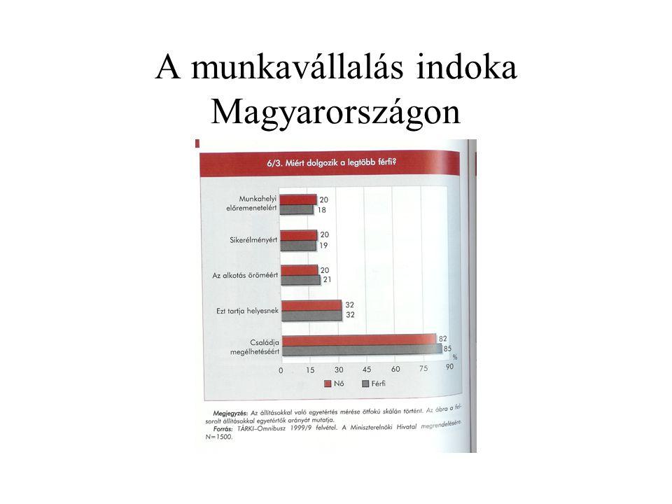A munkavállalás indoka Magyarországon