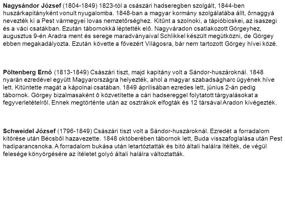 Nagysándor József (1804-1849) 1823-tól a császári hadseregben szolgált, 1844-ben huszárkapitányként vonult nyugalomba. 1848-ban a magyar kormány szolgálatába állt, ôrnaggyá nevezték ki a Pest vármegyei lovas nemzetôrséghez. Kitûnt a szolnoki, a tápióbicskei, az isaszegi és a váci csatákban. Ezután tábornokká léptették elô. Nagyváradon csatlakozott Görgeyhez, augusztus 9-én Aradra ment és serege maradványaival Schlikkel készült megütközni, de Görgey ebben megakadályozta. Ezután követte a fôvezért Világosra, bár nem tartozott Görgey hívei közé.