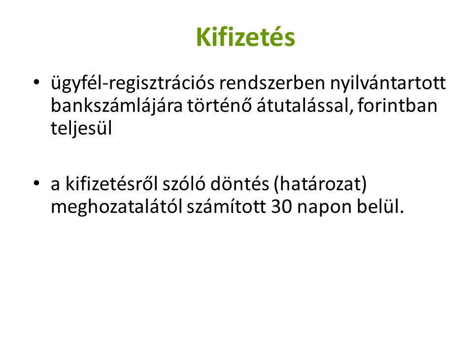 Kifizetés ügyfél-regisztrációs rendszerben nyilvántartott bankszámlájára történő átutalással, forintban teljesül.