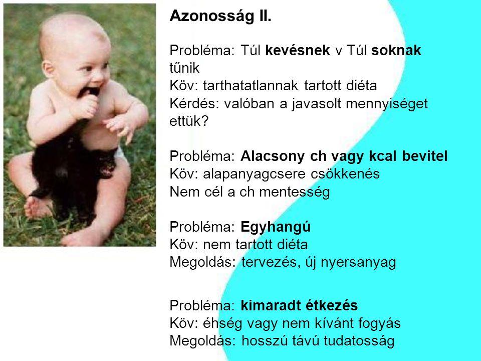 Azonosság II.