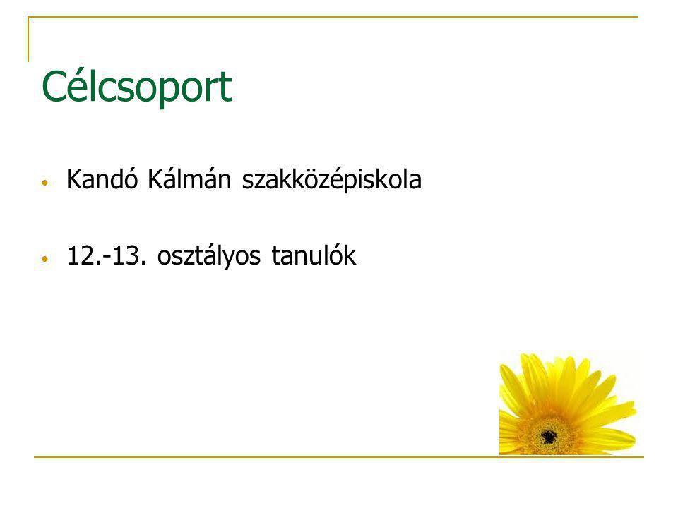 Célcsoport Kandó Kálmán szakközépiskola 12.-13. osztályos tanulók