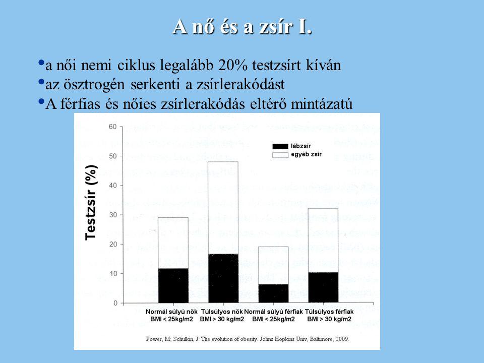 A nő és a zsír I. a női nemi ciklus legalább 20% testzsírt kíván