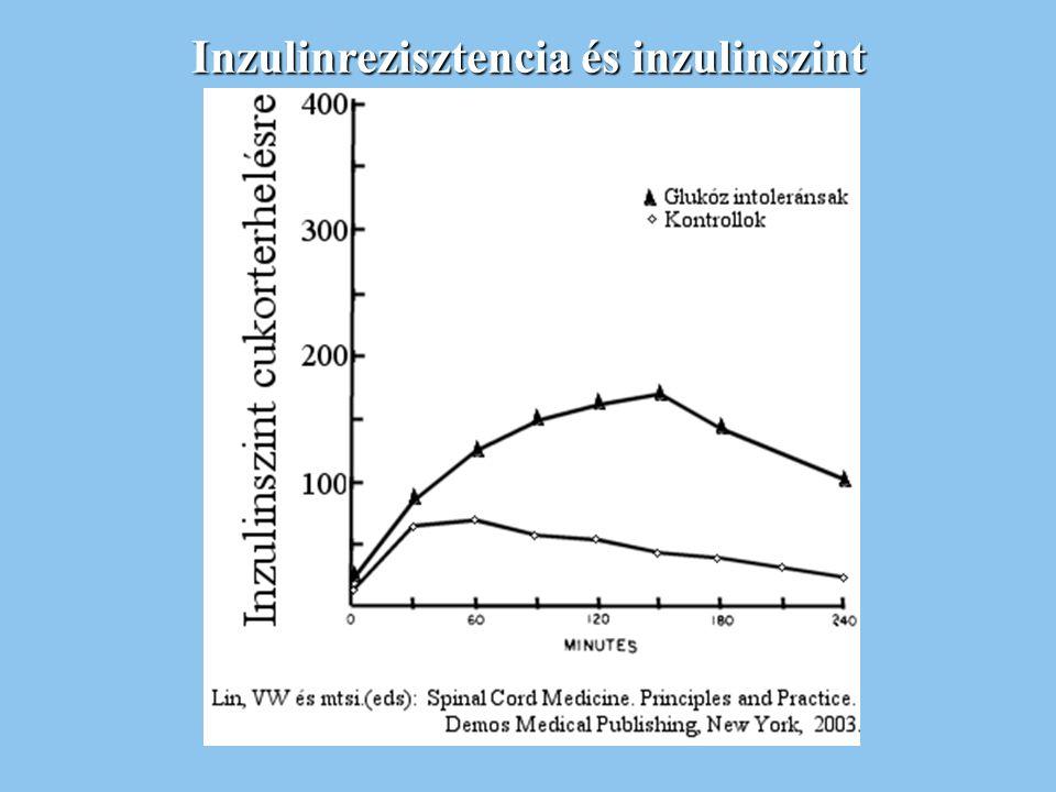 Inzulinrezisztencia és inzulinszint