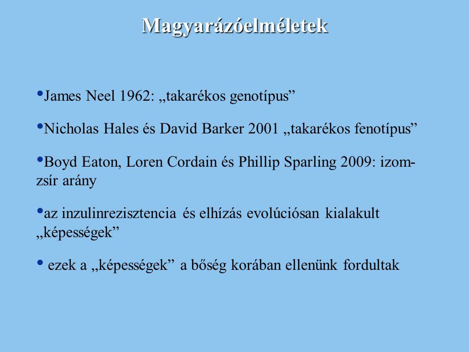 """Magyarázóelméletek James Neel 1962: """"takarékos genotípus"""