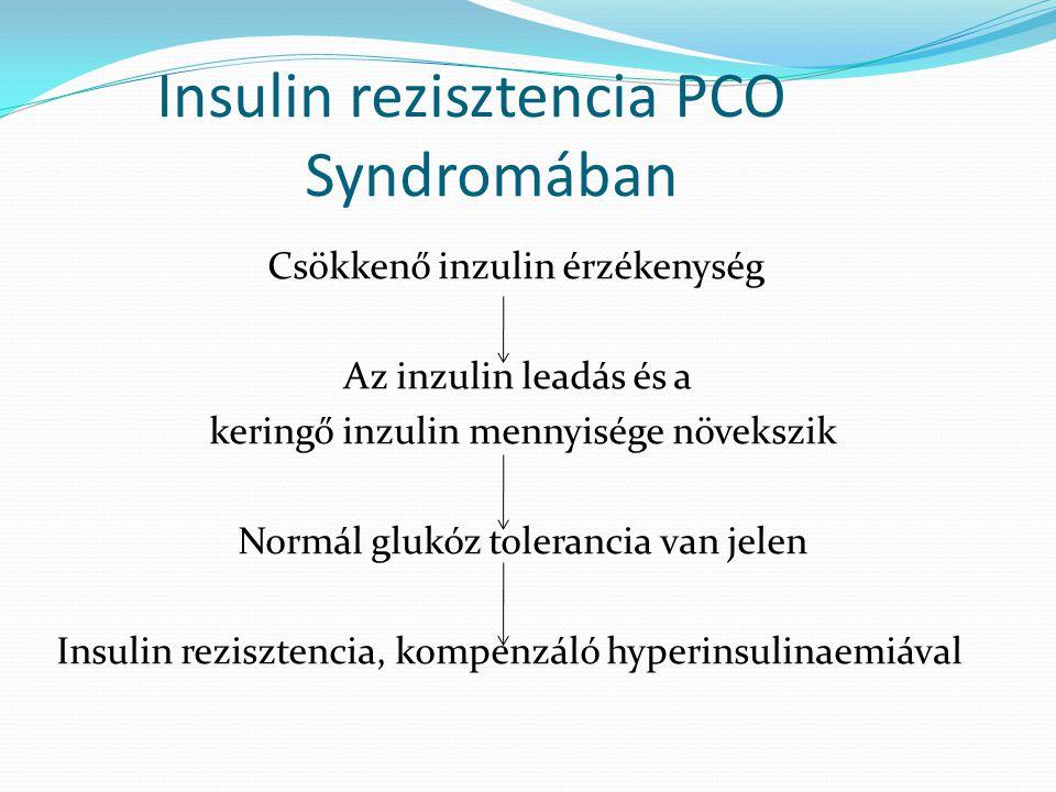 Insulin rezisztencia PCO Syndromában