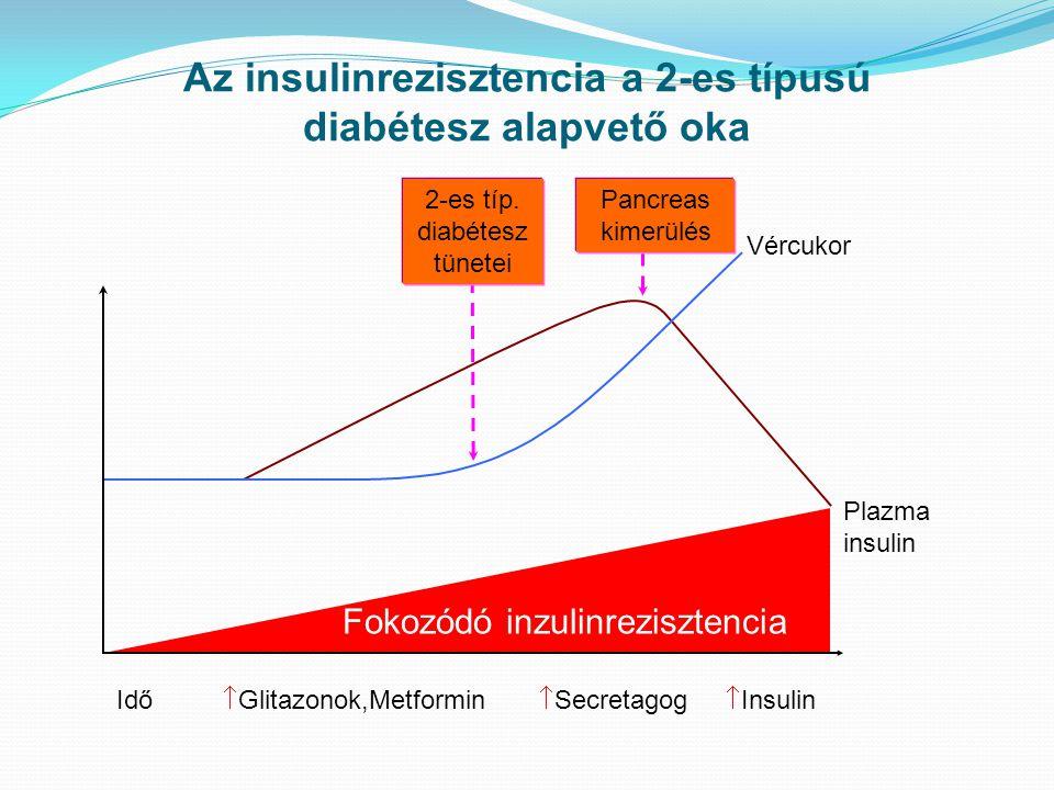 Az insulinrezisztencia a 2-es típusú diabétesz alapvető oka