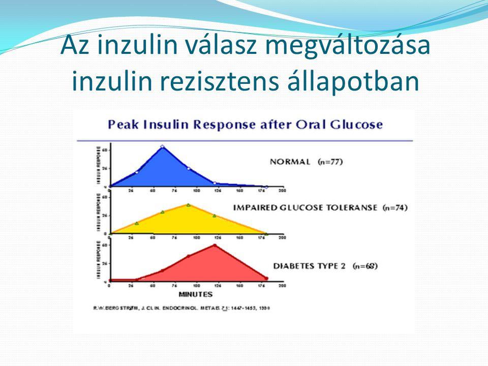 Az inzulin válasz megváltozása inzulin rezisztens állapotban
