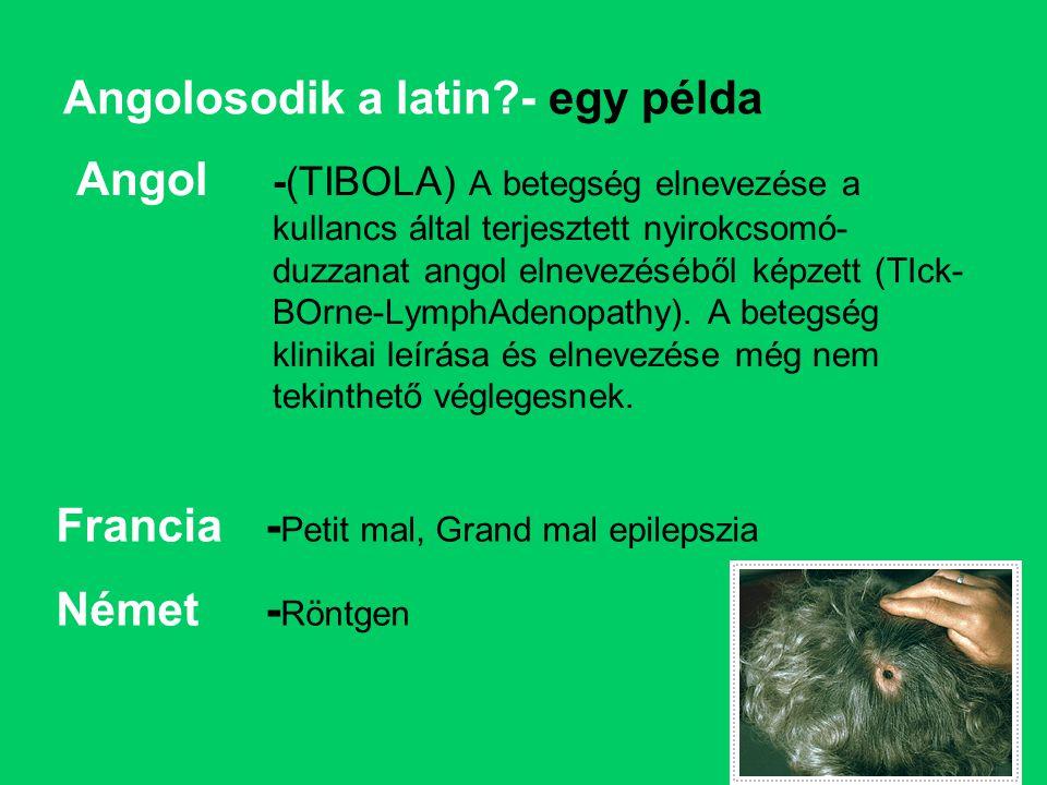 Angolosodik a latin - egy példa
