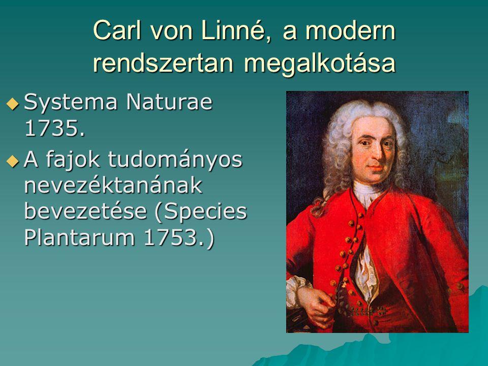 Carl von Linné, a modern rendszertan megalkotása