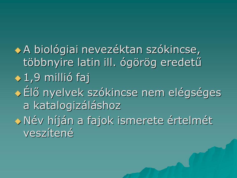 A biológiai nevezéktan szókincse, többnyire latin ill. ógörög eredetű