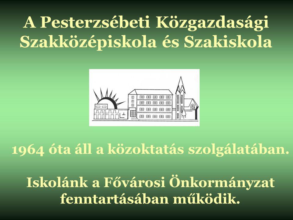 A Pesterzsébeti Közgazdasági Szakközépiskola és Szakiskola