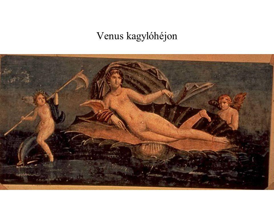 Venus kagylóhéjon