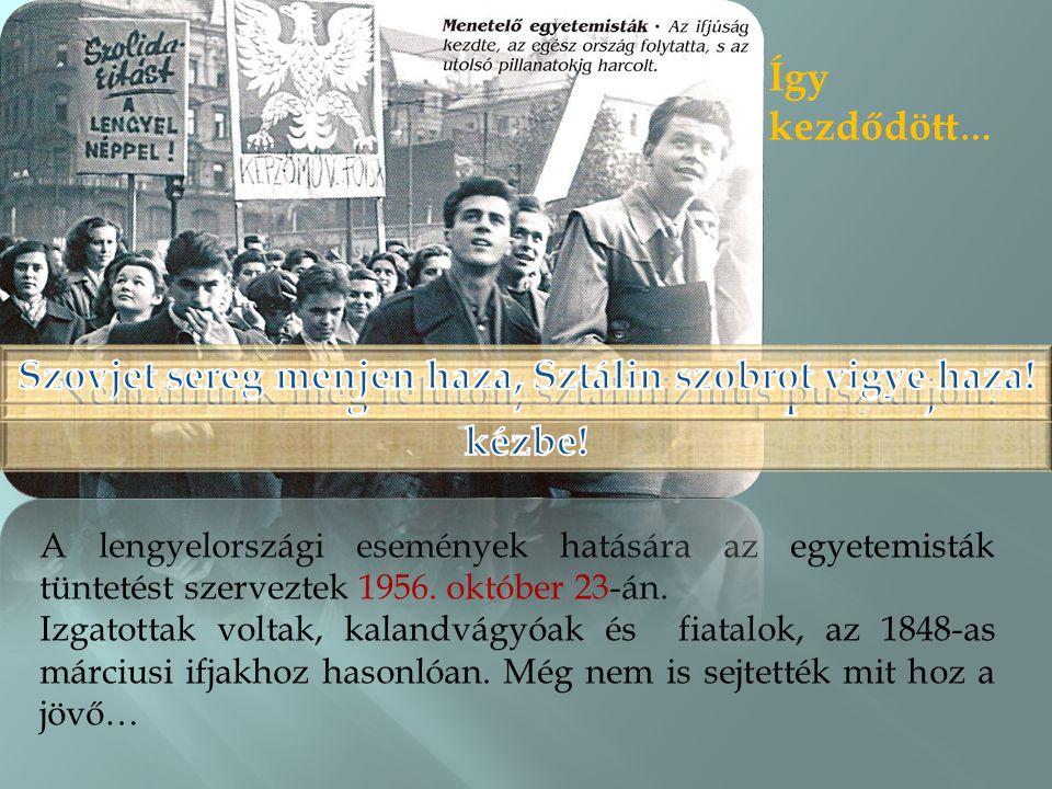 Szovjet sereg menjen haza, Sztálin szobrot vigye haza!